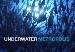 """Film : """"Podvodni metropolis""""- dokumentarni serijal"""